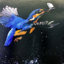 acrylic humming bird by richard.