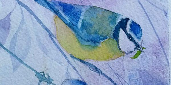 Hills.Blue Tits, Hills, 11×27 22×40 £220 copy