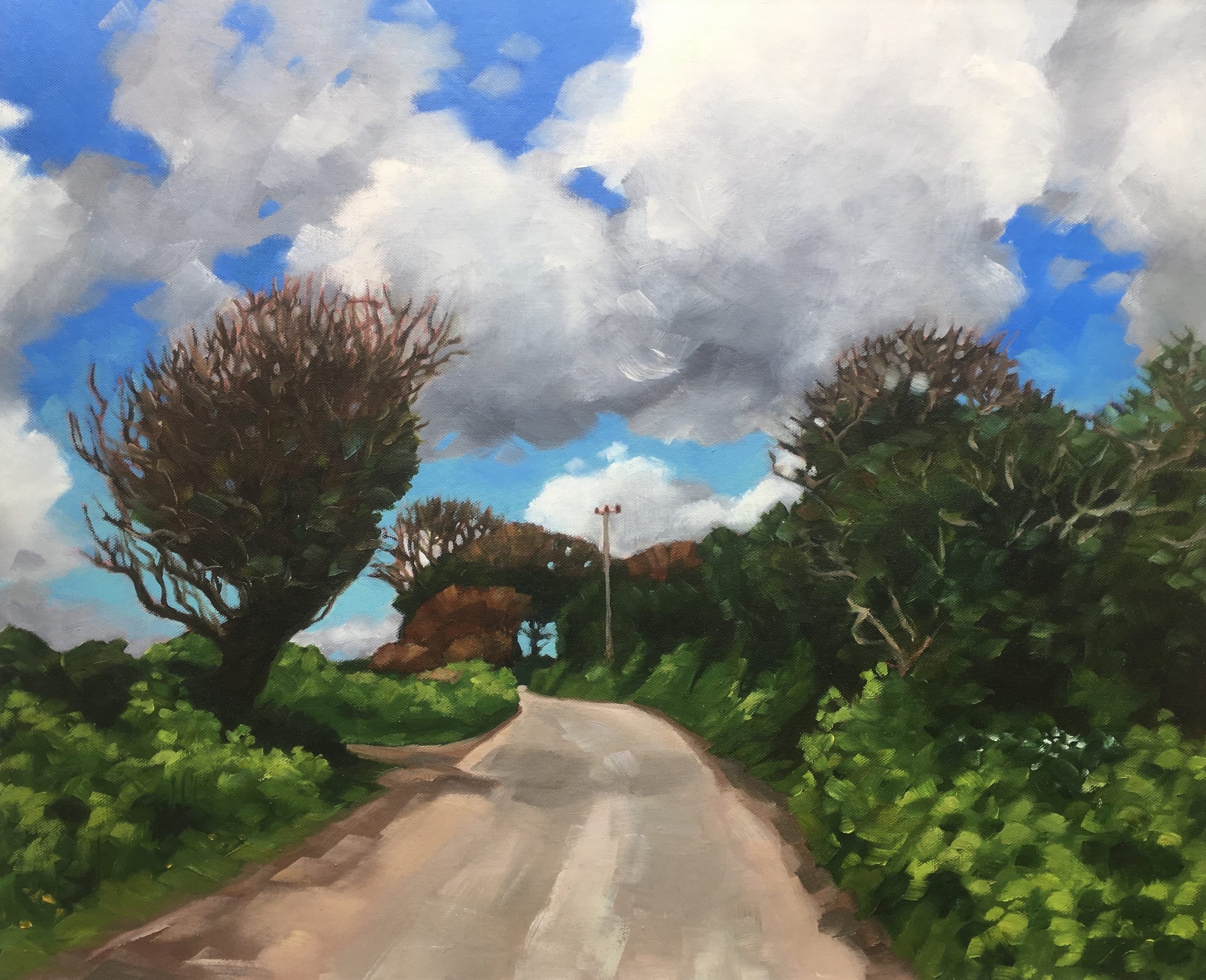 stokes road to Nowhere £550 59cm x 50cm 75 x 65 copy