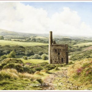 Dartmoor Landscapes